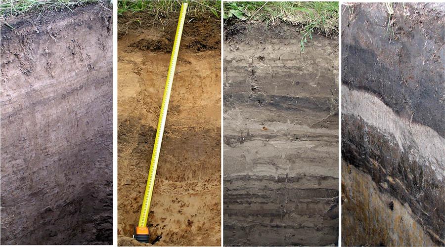 Аллювиальные пойменные почвы реферат 4412